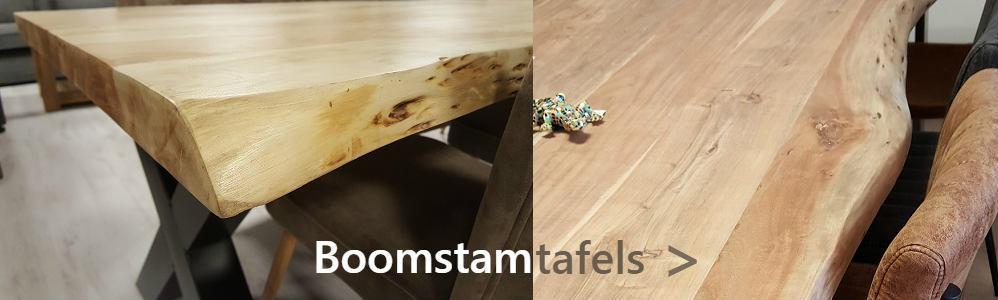 Boomstamtafels