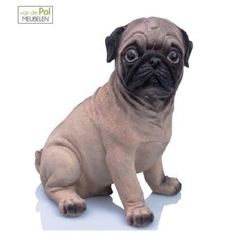 spaarpot-dierenbeeldje-mopshond-hond-beeld-steen-boltze